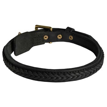 Braided Leather Collar for Swiss Mountain Dog
