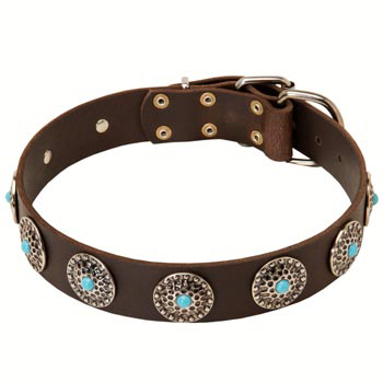 Leather Swiss Mountain Dog Collar