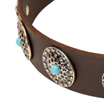 Blue-Stones Leather Swiss Mountain Dog Collar