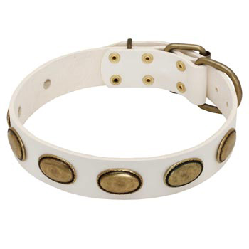 White Leather Swiss Mountain Dog Collar with Vintage Oval Plates