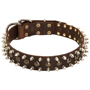 Swiss Mountain Dog Leather Collar with Stylish Decoration