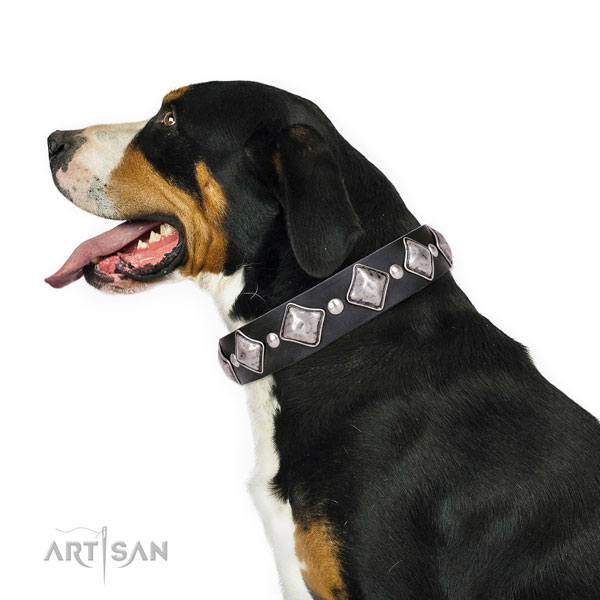 Comfy wearing embellished dog collar of high quality natural leather