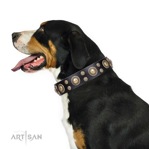 Daily walking adorned dog collar of durable leather