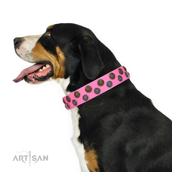 Stylish walking embellished dog collar of high quality material