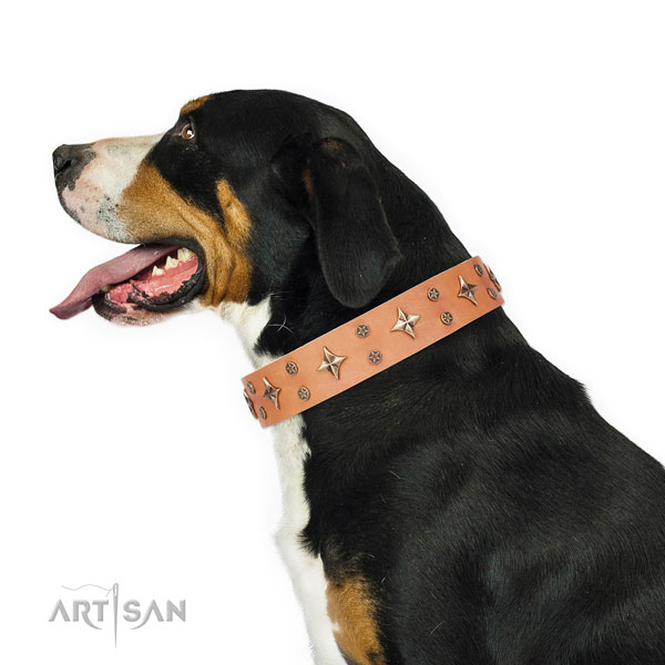 Daily use studded dog collar of durable material