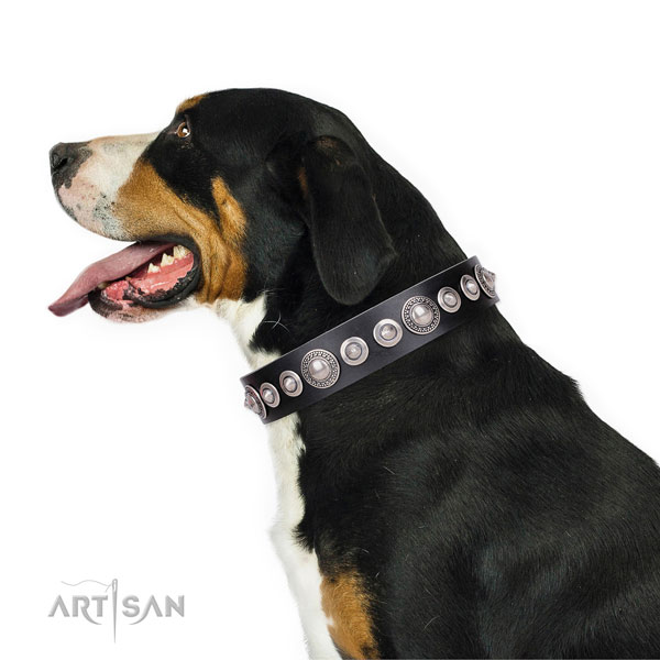 Designer decorated natural leather dog collar for fancy walking