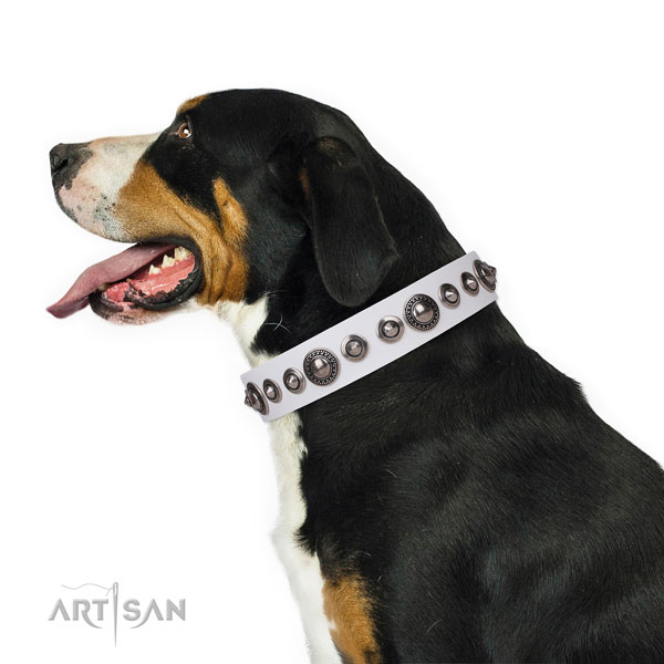 Unusual studded leather dog collar for everyday use