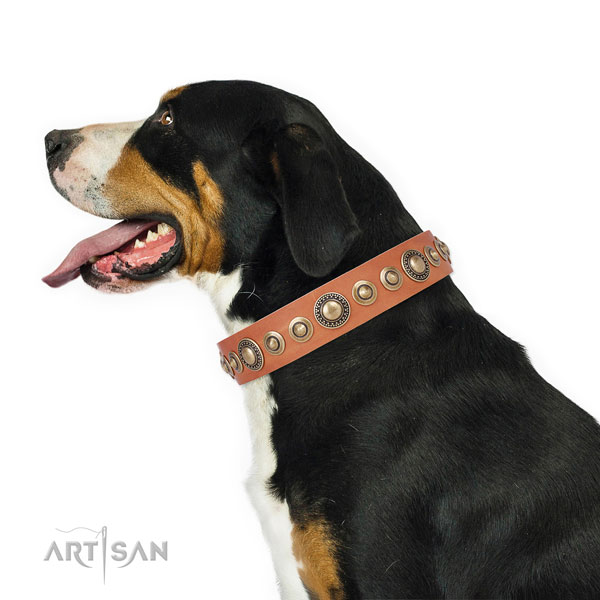 Corrosion resistant buckle and D-ring on full grain leather dog collar for daily use