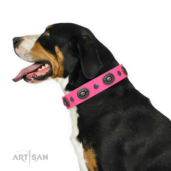 Full grain leather dog collar with corrosion proof buckle and D-ring for everyday walking