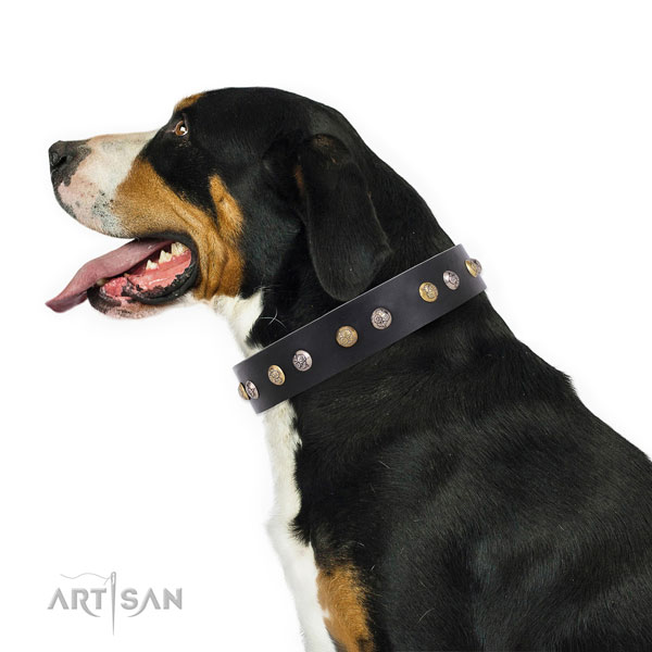 Leather dog collar with corrosion resistant buckle and D-ring for easy wearing