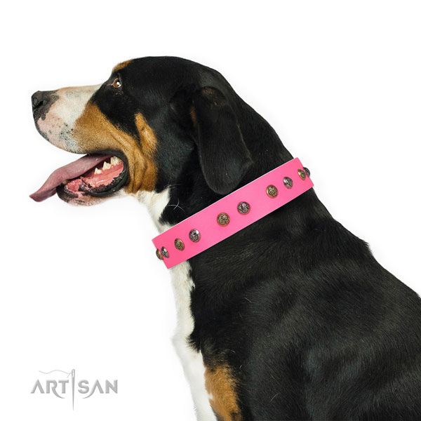Basic training embellished dog collar made of quality natural leather