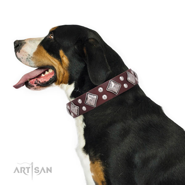 Everyday walking decorated dog collar made of high quality genuine leather