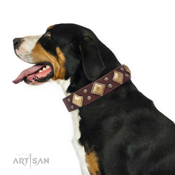 Comfortable wearing embellished dog collar made of best quality natural leather