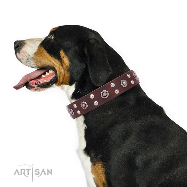 Walking decorated dog collar made of high quality natural leather