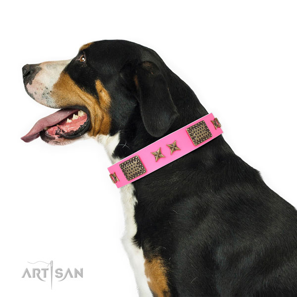 Exquisite adornments on comfy wearing leather dog collar