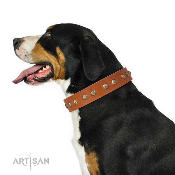Exceptional adornments on stylish walking natural genuine leather dog collar