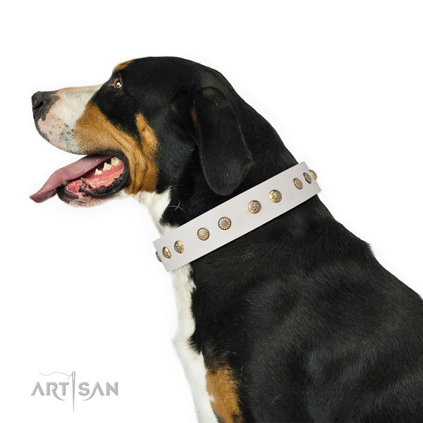 Exceptional studs on comfortable wearing full grain natural leather dog collar