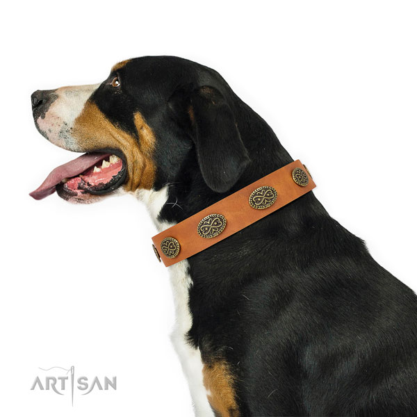 Extraordinary decorations on comfy wearing genuine leather dog collar
