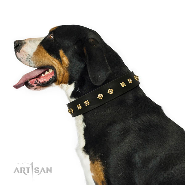 Unique studs on stylish walking genuine leather dog collar