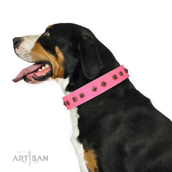 Incredible studs on everyday walking dog collar