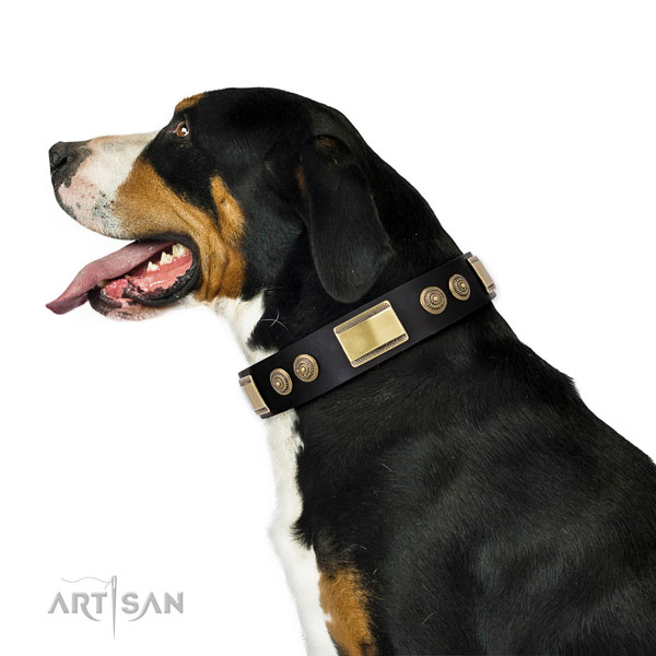 Significant studs on everyday walking dog collar