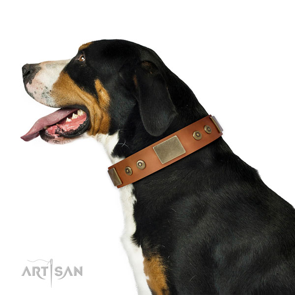 Durable daily walking dog collar of natural leather