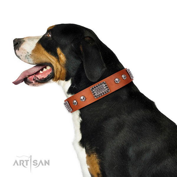 Designer leather collar for your lovely pet