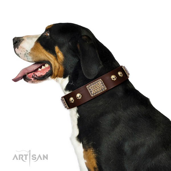 Rust-proof hardware on full grain natural leather dog collar for daily use