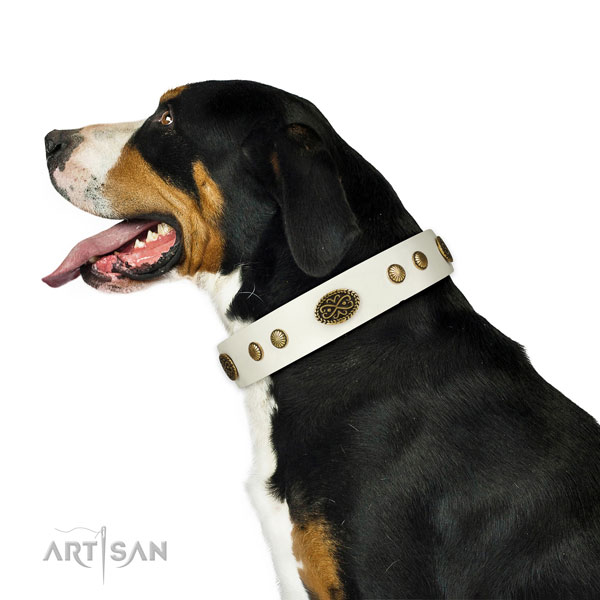 Rust resistant D-ring on leather dog collar for daily use