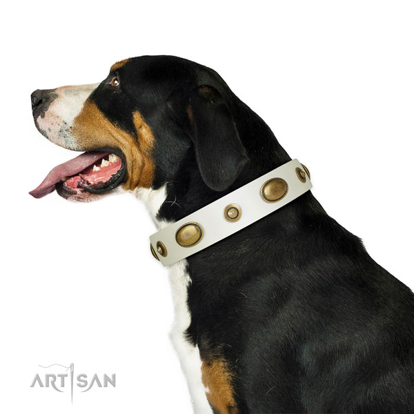 Everyday use dog collar of genuine leather with incredible studs