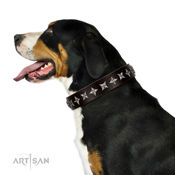 Comfortable wearing studded dog collar of high quality natural leather