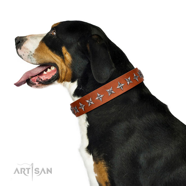 Top notch full grain genuine leather dog collar with incredible decorations