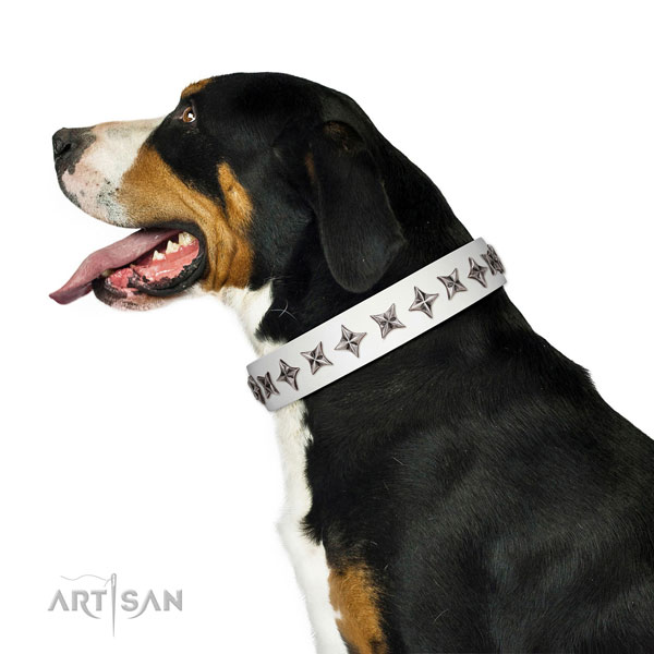 Fine quality leather dog collar with awesome decorations