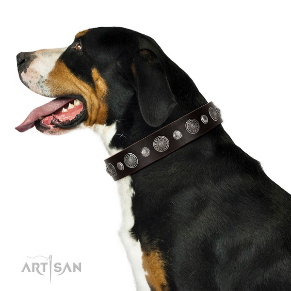 Designer genuine leather dog collar with rust-proof hardware
