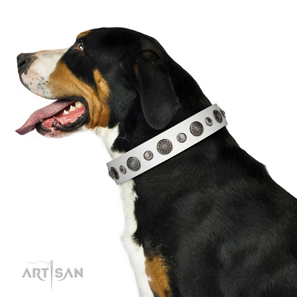 Designer full grain genuine leather dog collar with rust resistant traditional buckle