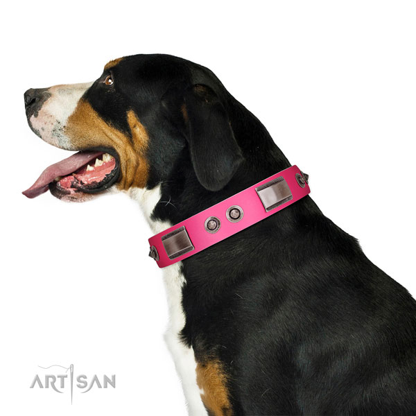 Exquisite full grain natural leather dog collar with embellishments