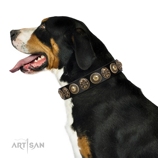 Unique genuine leather collar for your impressive canine