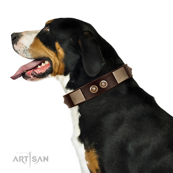 Corrosion proof buckle on full grain leather dog collar for basic training