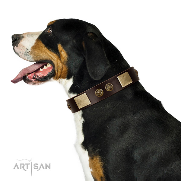 Comfortable wearing dog collar of natural leather with remarkable adornments