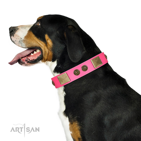 Easy adjustable dog collar crafted for your beautiful doggie