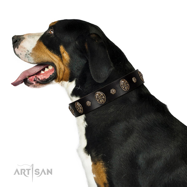 Walking dog collar of natural leather with significant adornments