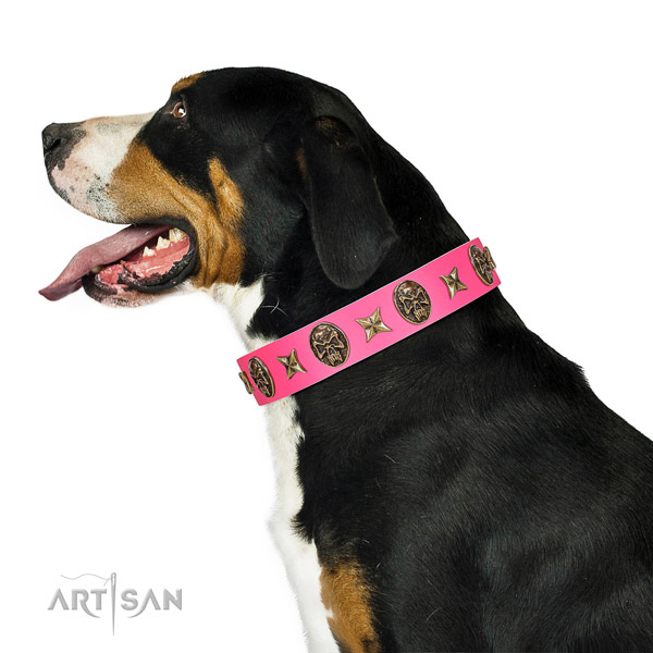 Exceptional dog collar created for your beautiful doggie