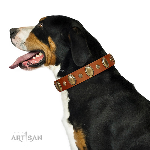 Unusual full grain natural leather dog collar with rust-proof hardware