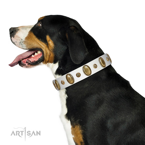 Fancy walking top rate leather dog collar with adornments