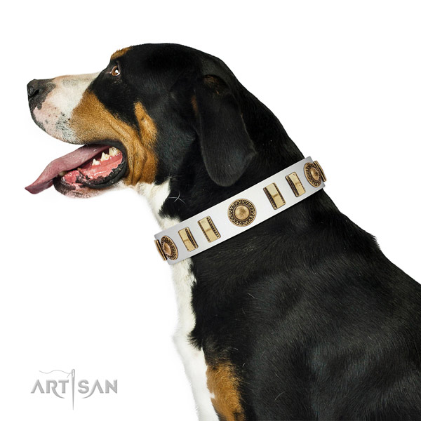 Top quality full grain genuine leather dog collar with reliable hardware