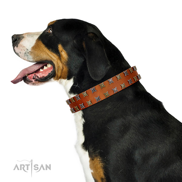 Gentle to touch leather dog collar with studs for your canine