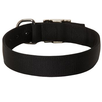 Nylon Collar for Swiss Mountain Dog Comfy Training