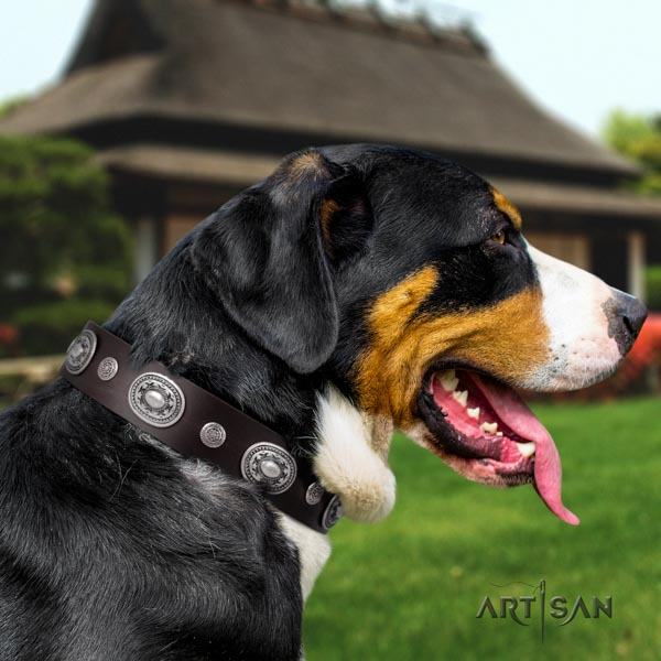Swiss Mountain everyday use natural leather collar with decorations for your canine