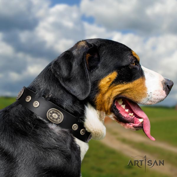 Swiss Mountain handy use full grain genuine leather collar with studs for your dog