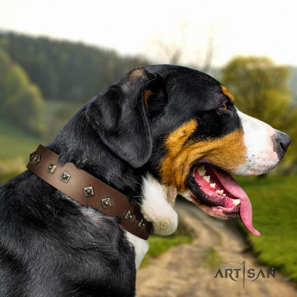 Swiss Mountain daily walking leather collar with studs for your canine